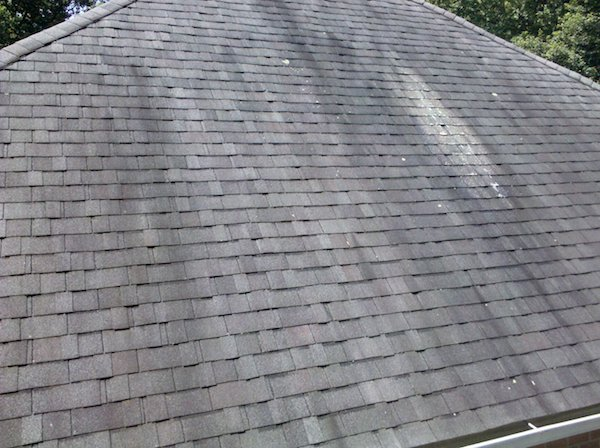 Effect of Algae on Roof Shingles